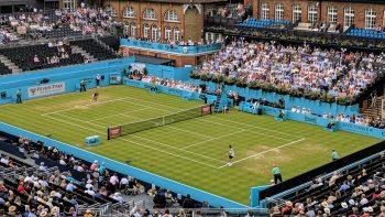 Sem temporada de grama, tênis só volta em julho